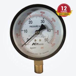 Đồng hồ đo áp P50-D100 (Đài Loan)